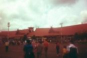 Borneo Jungle