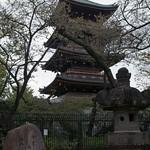Tokyo-Ueno-05