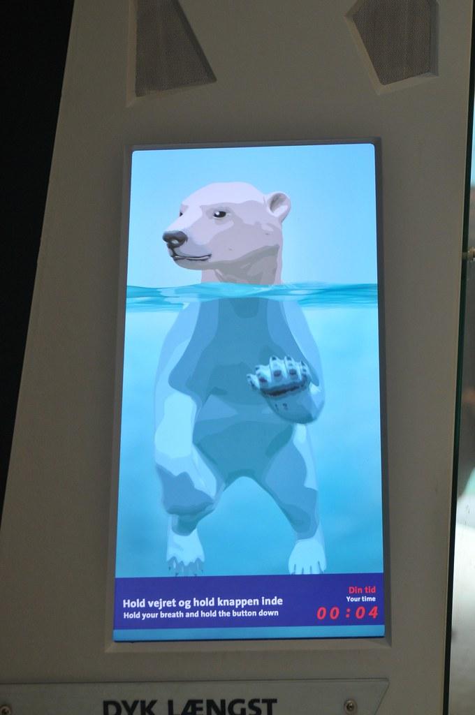 """""""Den Arktiske Ring""""  im København Zoo"""