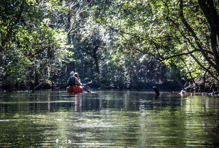 South Edisto River-014