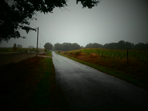 The wet road to Orthez