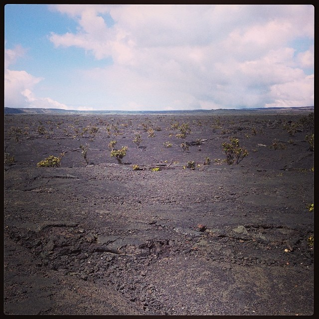 We hiked down to the bottom of our caldera, Halema'uma'u. This is the one Volcano House overlooks.
