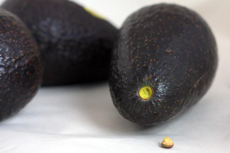 Avocado #5