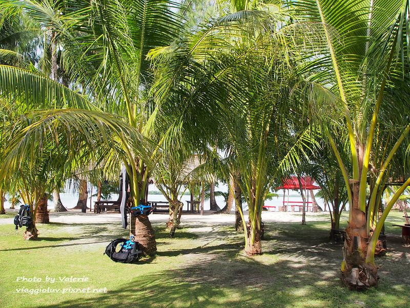 帛琉,星象島,海島渡假,無人島 @薇樂莉 Love Viaggio | 旅行.生活.攝影