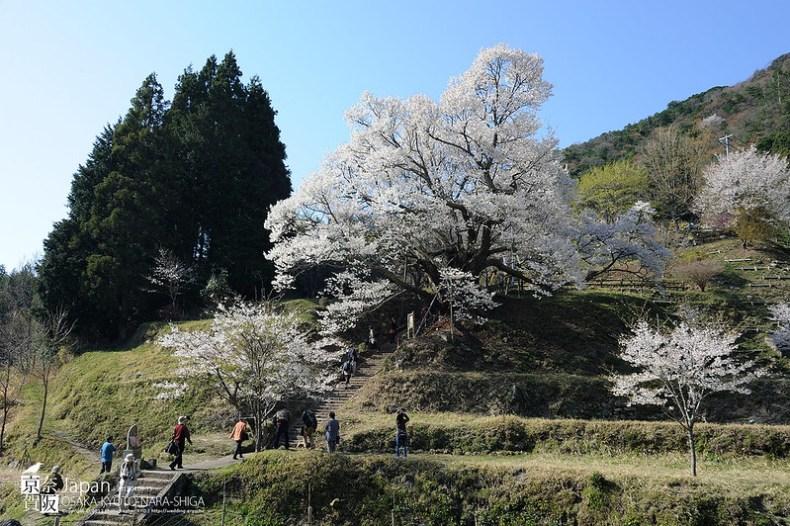 Japan-1589