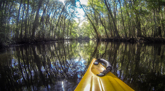 South Edisto River-035