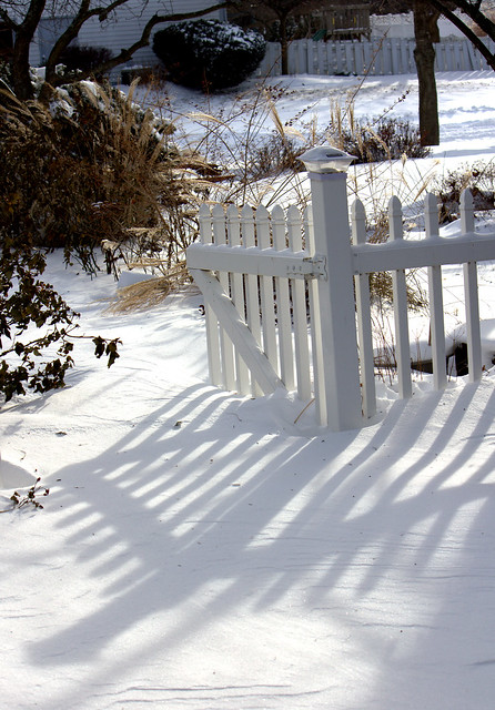 South garden gate in snow