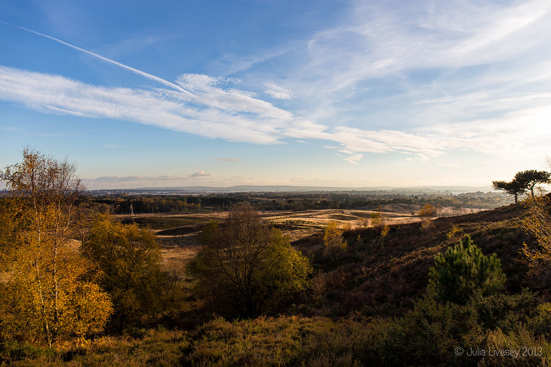 Upton Heath from the Viewpoint
