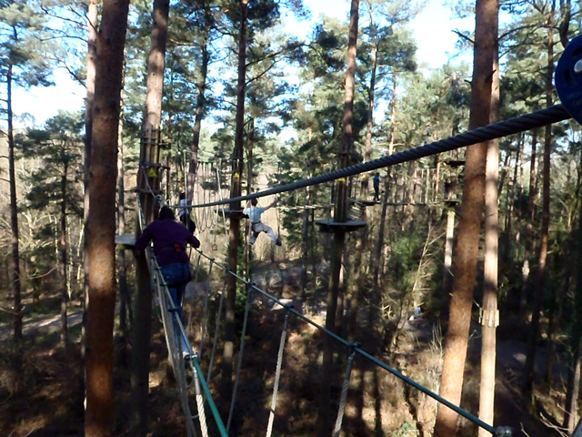 Go Ape overview 640