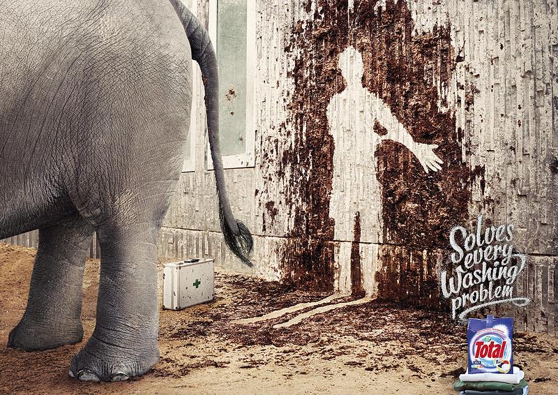Total Washing Problem elephant