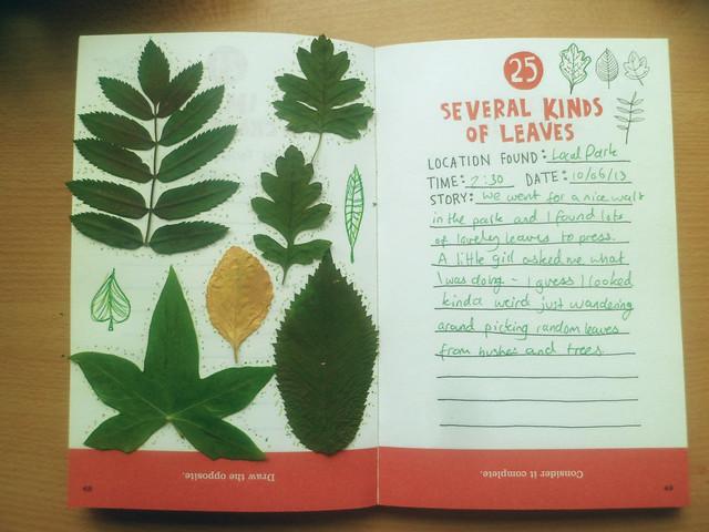 scavenger - leaves