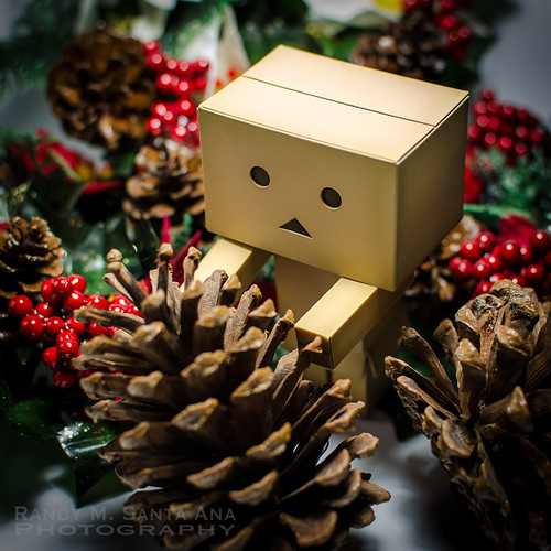 Danbo It's Almost That Time Of The Year.