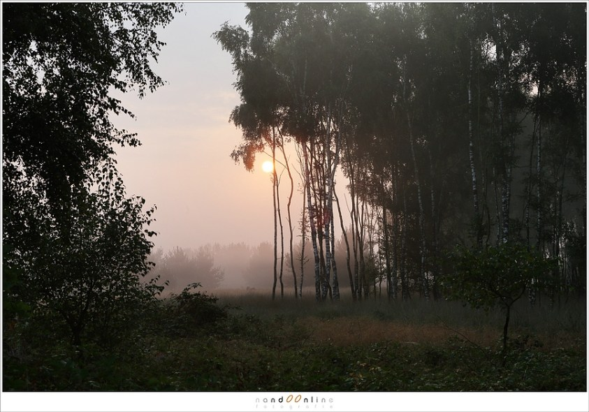 De zonsopkomst