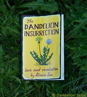 The Dandelion Insurrection by Rivera Sun
