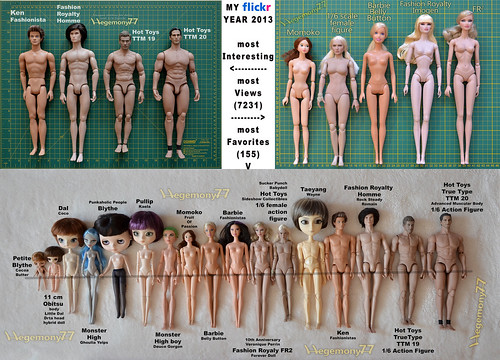 Comparison photos of dolls and 1/ 6 scale figures - My Flickr Year 2013 tag game by Hegemony77 doll clothes
