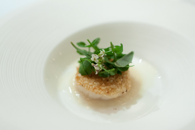 Kitchen Table - Scallop