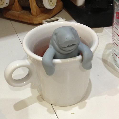 Mana-tea tea basket