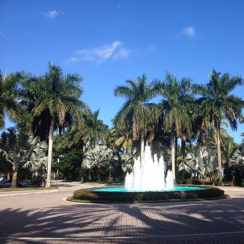 U of Miami 2