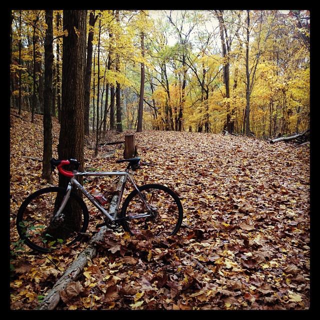Gravel ride. Glorious fall.
