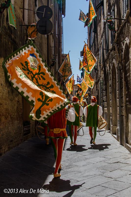 Siena, 2013