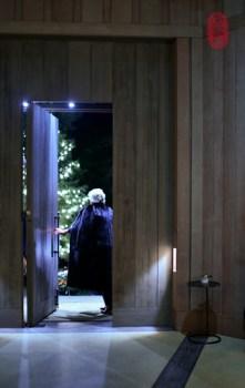 Mink. Door. Christmas.
