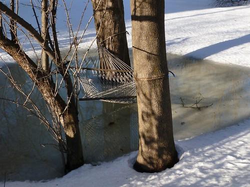 Not yet hammock season