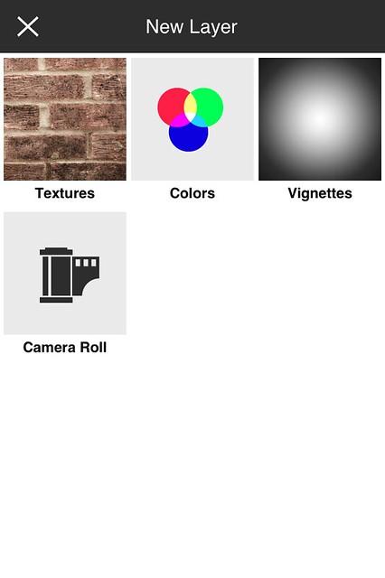 Camera Roll-5529