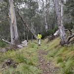 02 Viajefilos en Australia. Barrington NP 23