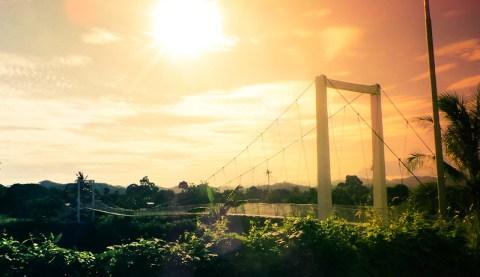 SGC - Landscape (1)