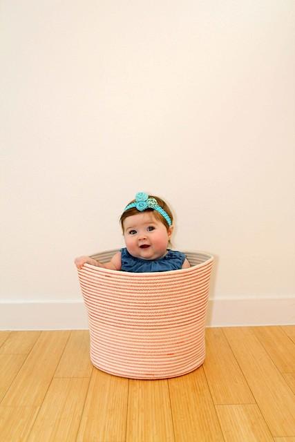 New basket!