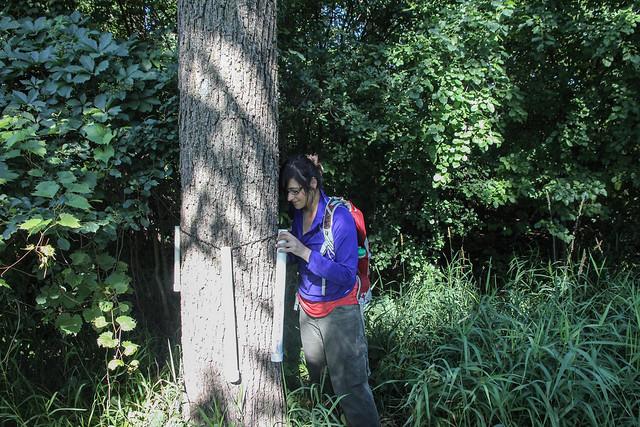 reptile amphibian survey checking the pvc refugia