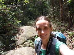 Hiking in the rainforest on the T10 Trail