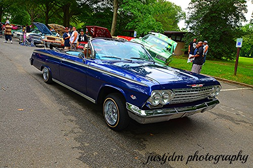 BEAUTIFUL BLUE  IMPALA VERT (15)