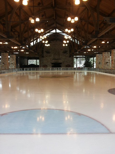The Skating Pavilion