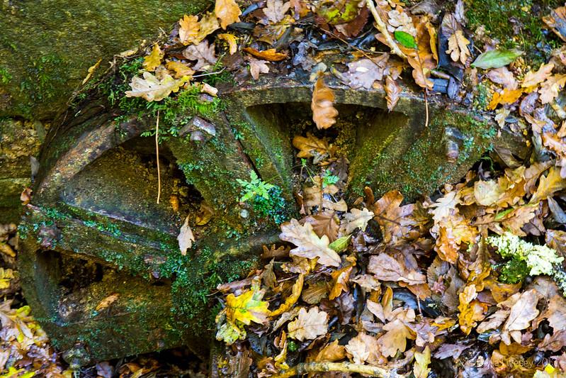 Old water wheel from the gunpowder works