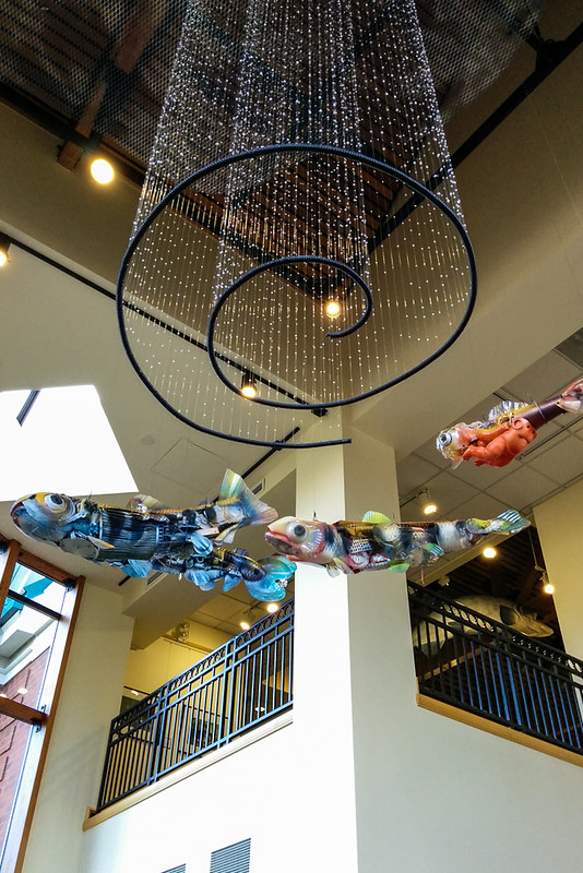 Salmon Lifecycle sculpture by Maggie Rudy and Patty Maly