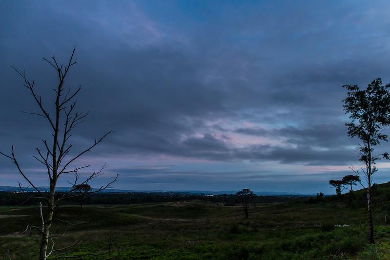 Upton Heath at Night