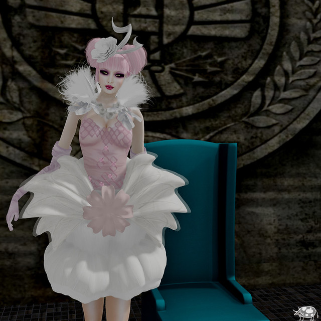 capitol couture1