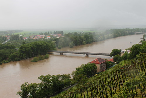 Flooded Labe river