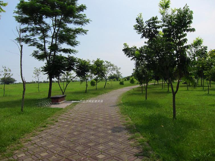 大樹舊鐵橋生態公園 (16)
