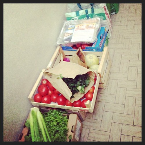 Catozzi la spesa e pronta ! qualcosa mangeranno #agesci #lupetti #FO10