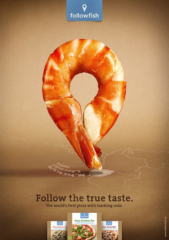 FollowFish - Shrimb