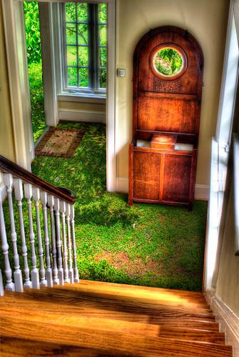 Grass Carpet by Dan Russell-Pinson