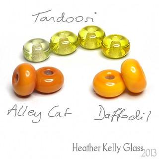 CiMLtd_tandoori_alleycat_daffodil