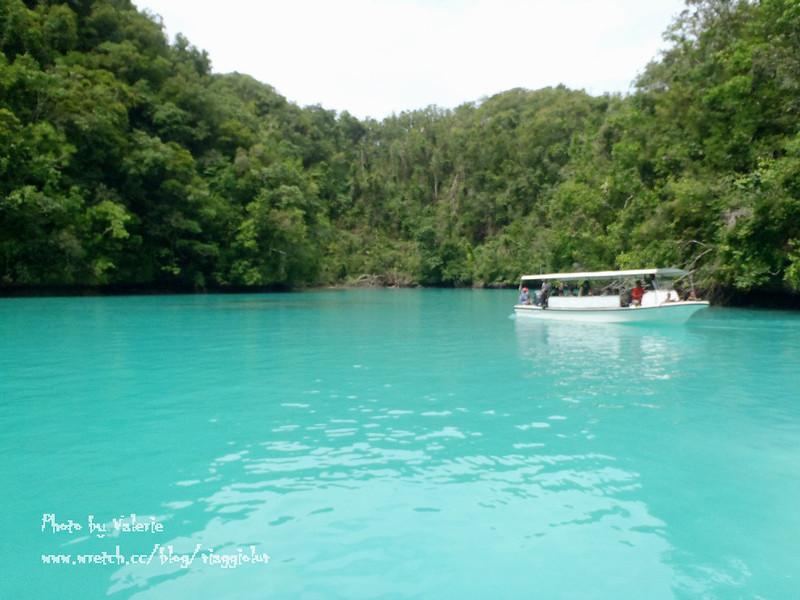 帛琉,浮潛,牛奶湖 @薇樂莉 Love Viaggio | 旅行.生活.攝影