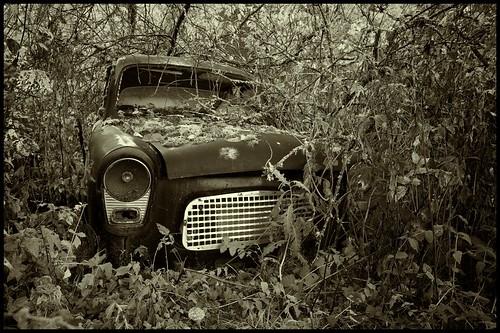 Ford (Un)Popular by Davidap2009