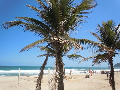 Tropical Paradise, Ipanema