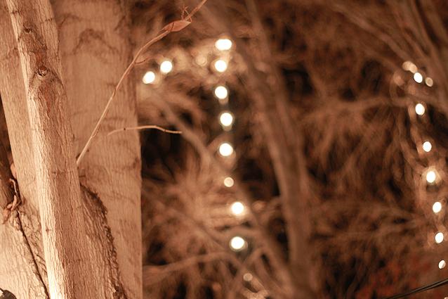 Vestido flores luces navidad