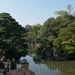 Kyoto-100