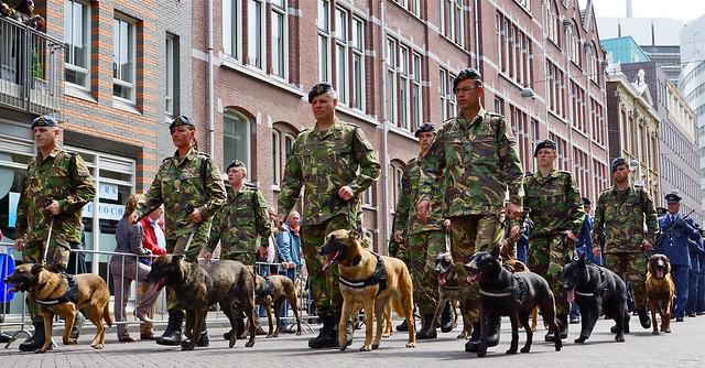 Den Haag veteranendag